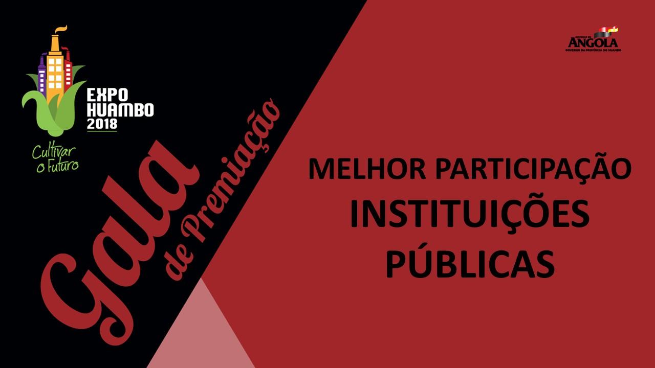 Categoria Instituições Públicas